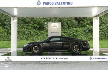 Exhibited Cars 65 - Salone Auto Torino Parco Valentino