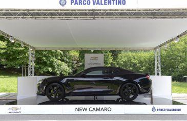 Exhibited Cars 73 - Salone Auto Torino Parco Valentino