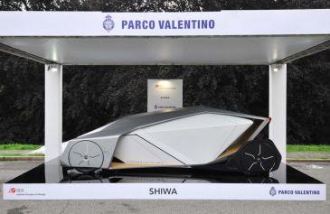 Exhibited Cars 84 - Salone Auto Torino Parco Valentino